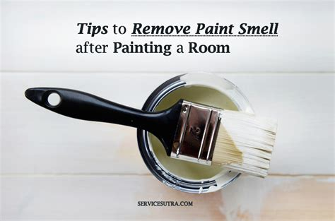 how to remove paint smell from room how to get rid of home odors purplebirdblog
