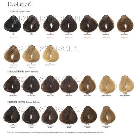 alfaparf color chart evolution farba newhairstylesformen2014