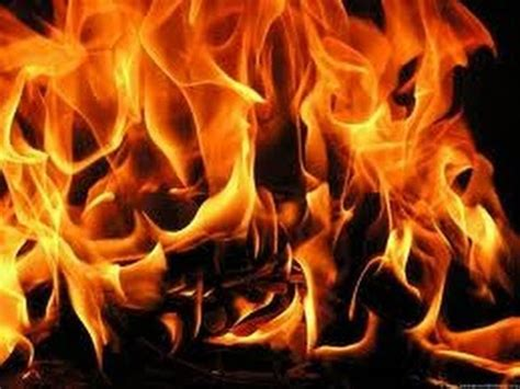 Fireplace Sound Effects by Sound Effect Free