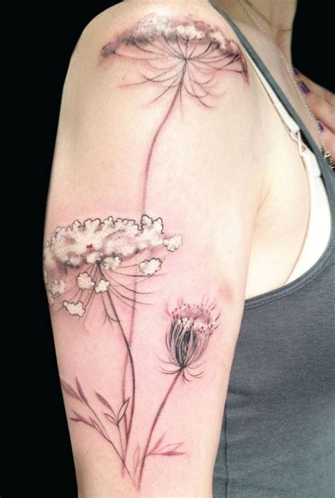 tattoo queen anne 713 best tattoos flower plant and tree tattoos images