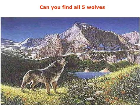 Can See What You Search On The Amazing Optical Illusion