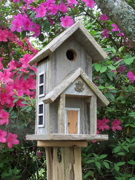 pattern bird house birdhouse designs free woodworking projects plans