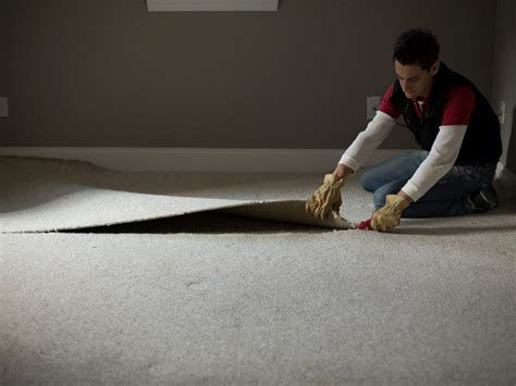 how to remove a wall how to remove wall to wall carpet hgtv