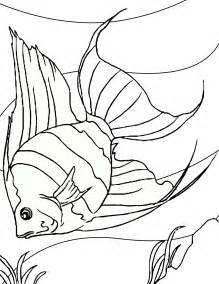 printable fish coloring pages free printable fish coloring pages for