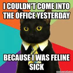 Sick Cat Meme - sick day meme