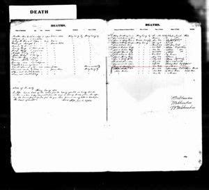 Kentucky Birth Records Free Agnes Cornett Shepard Sheppard 1750 1839 Wikitree Free Family Tree