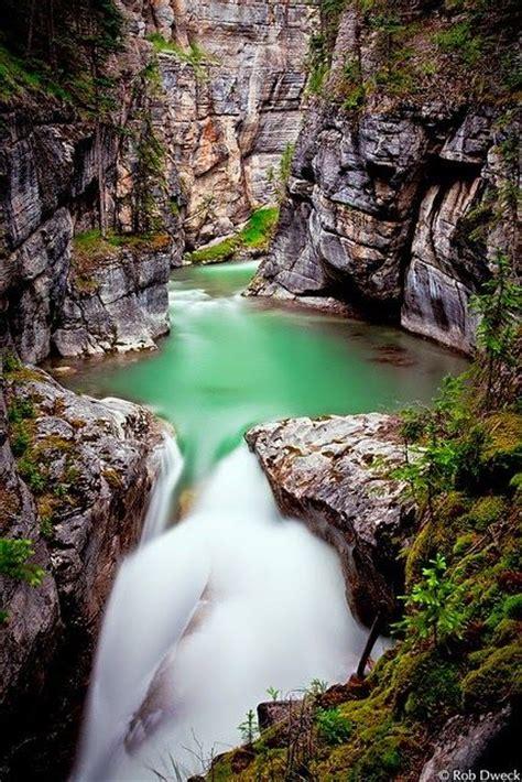 Jesper Togo maligne jasper national park alberta canada