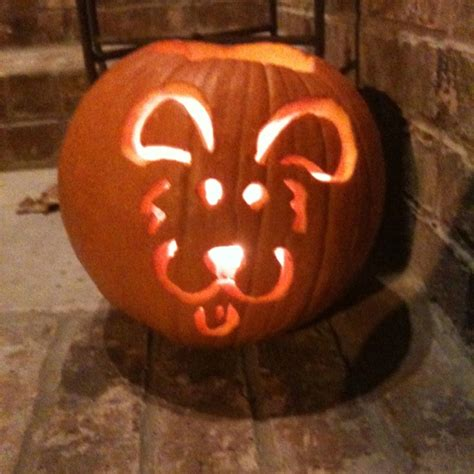 puppy pumpkin puppy pumpkin o lantern fall crafts