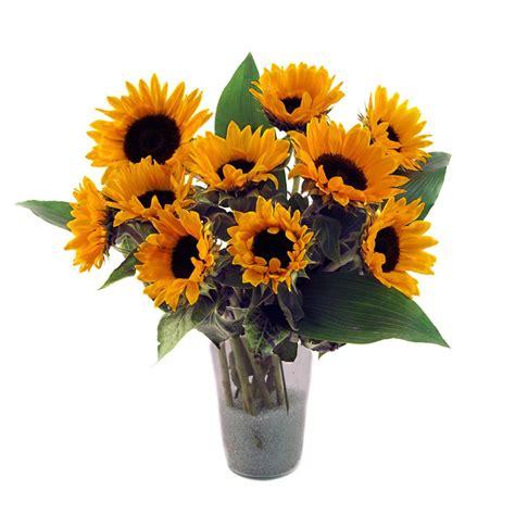 costo mazzo fiori mazzo lungo di girasoli acquista fiori a