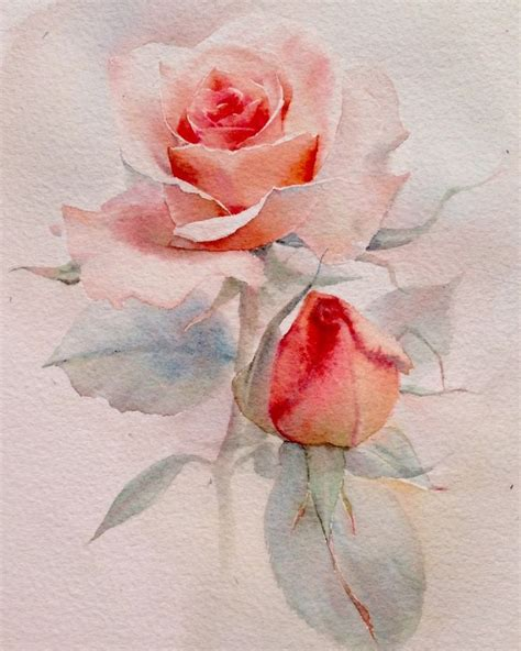 watercolor tattoos boise 2438 best aquarelle images on