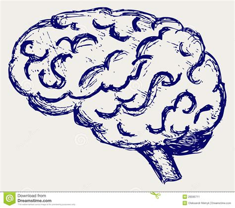 doodle brain human brain stock image image 26595711