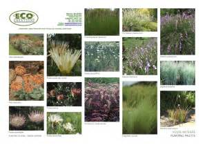 House Plan Names South African Indigenous Grasses Landscapeislapinski