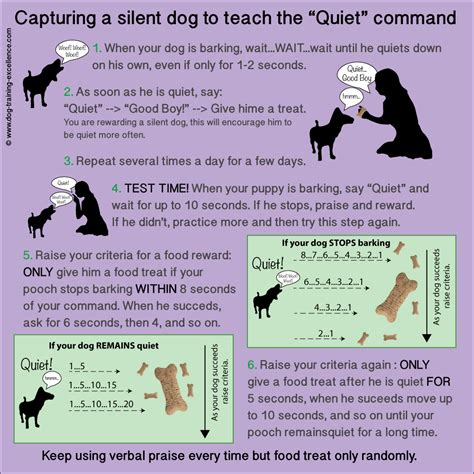 how to a to bark how to stop barking teach your the quot quot command