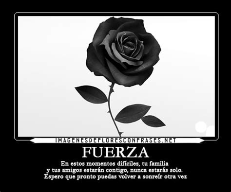imagenes de luto con frases tristes hermosas rosas negras con frases de luto para compartir