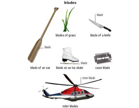 plant 1 noun definition pictures pronunciation and grass 1 noun definition pictures pronunciation and