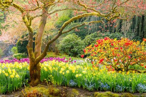imagenes wasap verano 41 hermosas im 225 genes de paisajes de primavera para