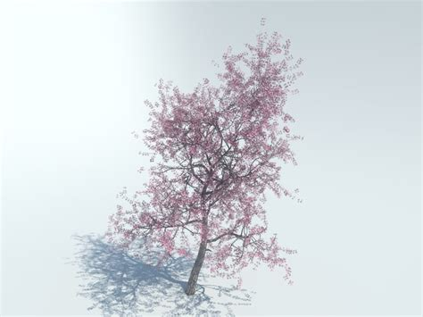 cherry tree 3ds max 3d max realistic tree