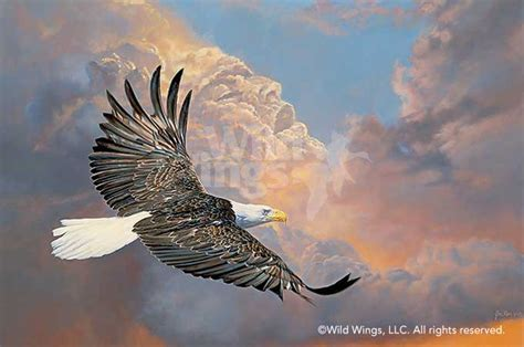 acrylic painting eagle pin eagle painting on