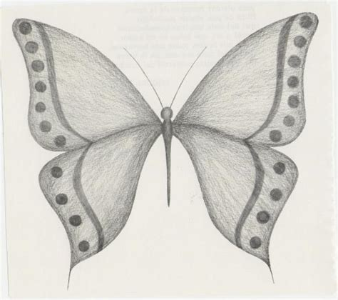 imagenes de mariposas a lapiz pin lapiz anime faciles board msn frases facebook dibujos