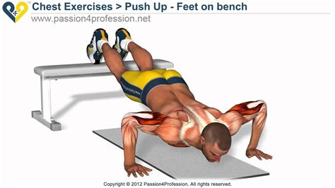 bench press push up bench press up perfect push up exercise feet on bench