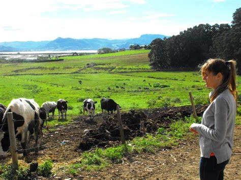 imagenes mujeres rurales ser mujer rural y sobrevivir en el intento