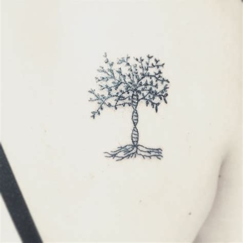 dna tree tattoo dna based tree of for the