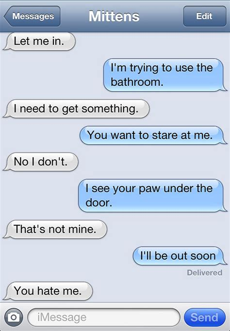texts from texts from mittens what if cats could text bored panda
