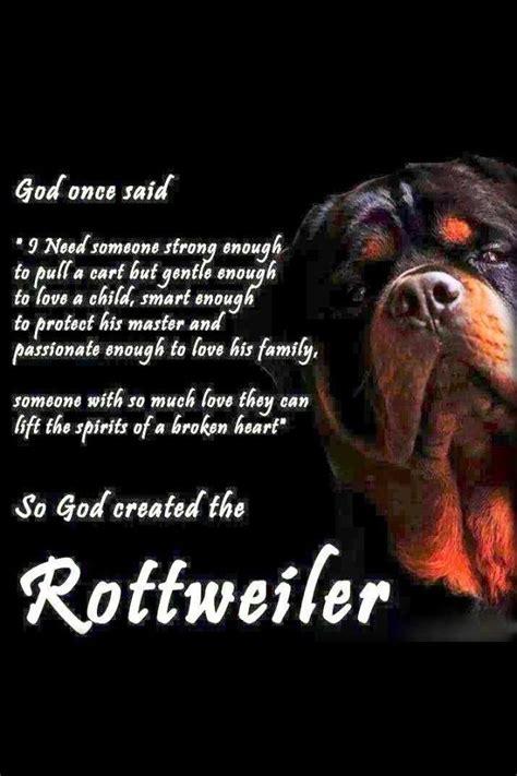 rottweiler jokes rottweiler quotes rottweilers so true and rolex