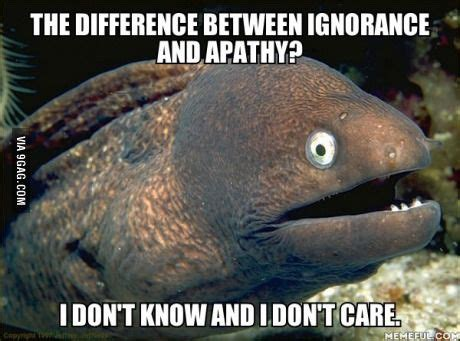 What Is The Difference Between Ignorance And Apathy Worksheet