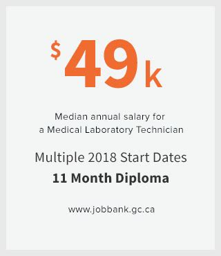 medical laboratory technician salary in florida top schools for