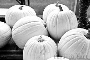 a place to hang my pictures the pumkin and squash weekend in black white