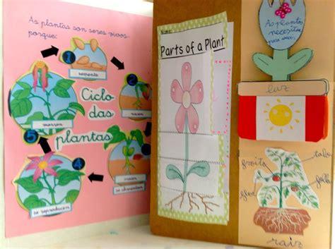 los dã as de mi vida edition books m 225 s de 1000 ideas sobre ciclos de vida de las plantas en