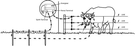 electric fencing circuit diagram building your electric fence grange co op