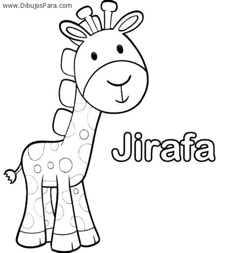 imagenes de jirafas para pintar dibujo de jirafa con nombre dibujos de jirafas para