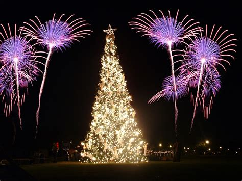 christmas trees and fireworks christmas traditions