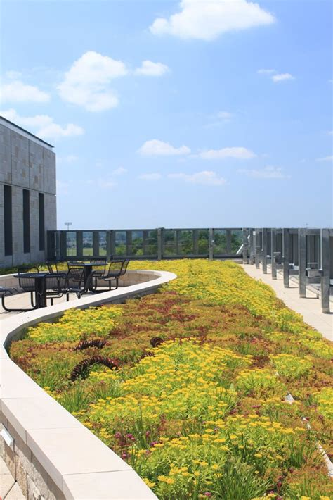 living roof michigan michigan allen grand valley state library