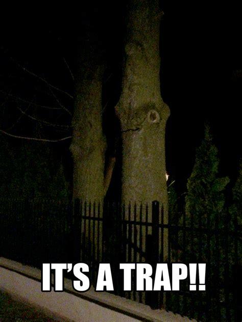 Its A Trap Meme - its a trap it s a trap know your meme