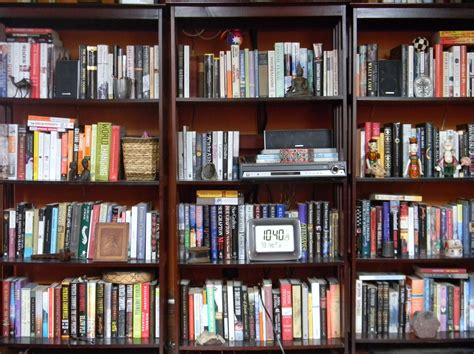shelf ish about books a library of untold tales