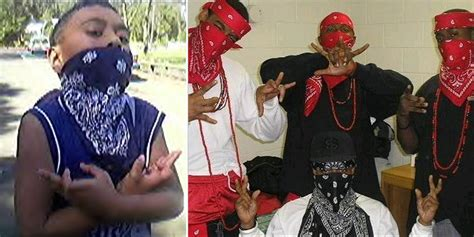 crips and bloods colors facts about the crips and the bloods therichest