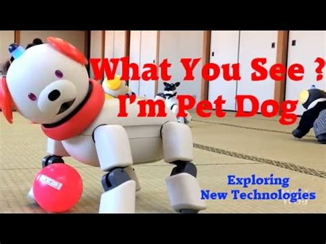 pet technologies company youtube robot dog reviews pet youtube