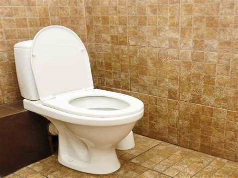 Blocked Toilet How To Repairs How To Fix A Broken Clogged Toilet How