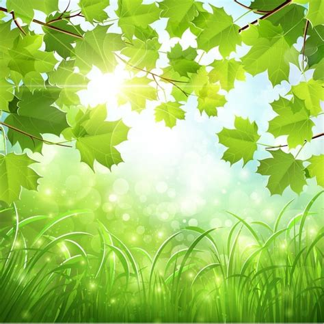 art design nature nature background clipart free vector download 46 674