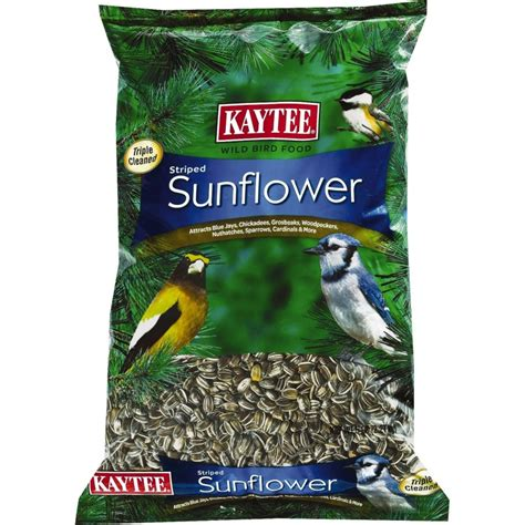 kaytee kaytee striped sunflower wild bird food parrot food