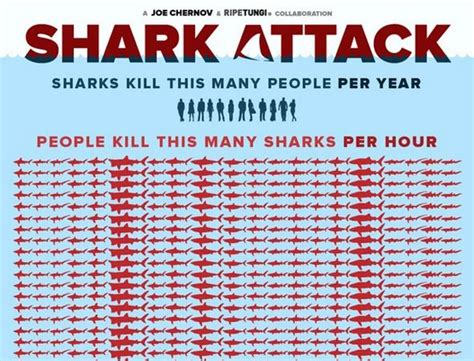 how many people are in the house of representatives shark attack here s how many sharks humans kill every hour