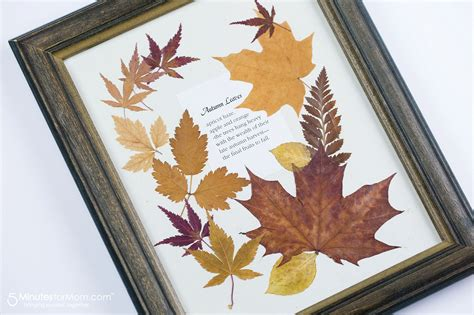 crafts with pressed flowers and leaves craft ideas for