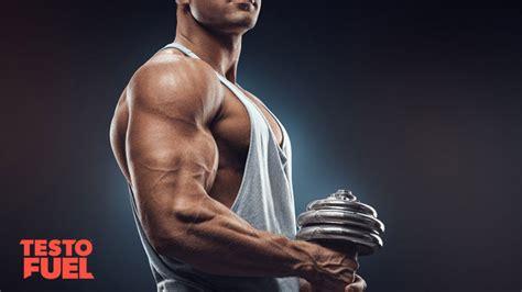 pine bark extract boost testosterone testofuel