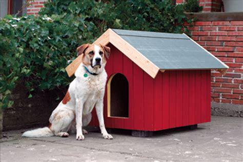 costruire una costruire una cuccia per cani termoisolata con polistirolo