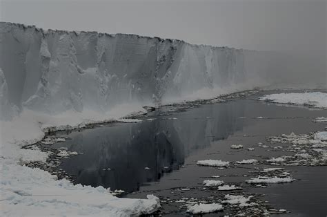 Antarctic Shelf by Antarctic Shelf Thinning Is Accelerating Reveals New