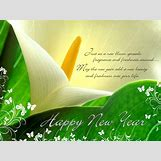 New Year Wishes Wallpapers | 1024 x 768 jpeg 624kB