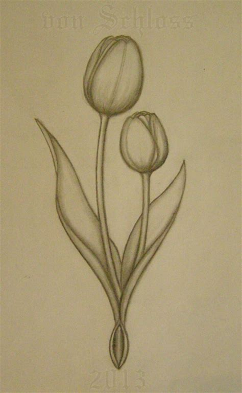 tulip tattoo ideas tulips sketch for a custom by vonschloss